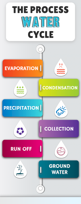 Online Editable Hydrological Cycle Process Infographic