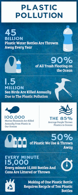 Online Editable Causes of Plastic Pollution Statistics Infographic