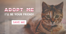 Online Editable Adopt a Pet Facebook Ad Post