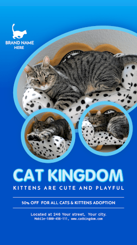 Online Editable Cat Kingdom Kittens for Sale GIF Post