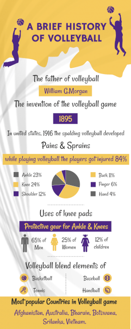 Online Editable History of Volleyball Statistics Infographic
