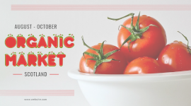 Online Editable Tomato From Organic Market Facebook App Ad