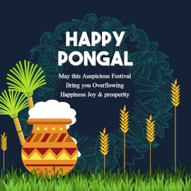 Online Editable Pongal Celebration Wish Design Instagram Post