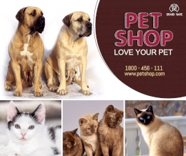 Online Editable Fancy Text Pet Shop 4 Grid Photo Collage