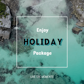 Online Editable Black and Blue Font Holiday Package Animated Design