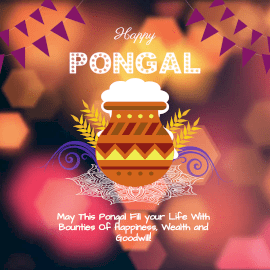 Online Editable Yellow & Purple Happy Pongal Wishes Animated Design