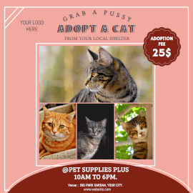 Online Editable Cat Adoption Center 4 Grid Photo Collage