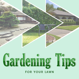 Gardening Tips - Instagram Post