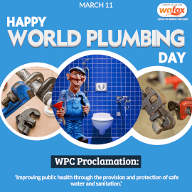Online Editable World Plumbing Day March 11 Instagram Post