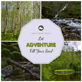 Online Editable Nature Adventure Camp 4 Grid Photo Collage