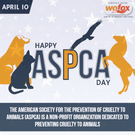 Online Editable American Society for the Prevention of Cruelty to Animals Day (ASPCA) April 10 Instagram Post