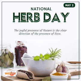 Online Editable National Herb Day Instagram Post