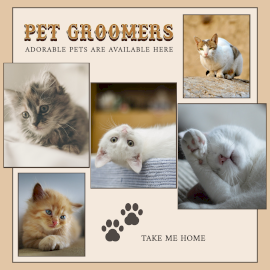 Online Editable Cat Grooming 5 Photo Collage