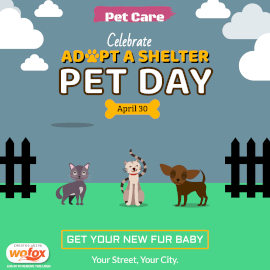 Online Editable National Adopt a Shelter Pet Day April 30 Instagram Post