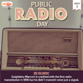 Online Editable Public Radio Day May 3 Instagram Post