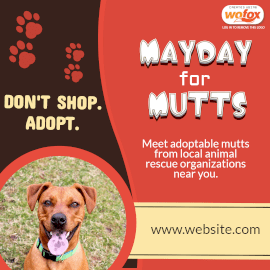Online Editable Mayday for Mutts Instagram Post