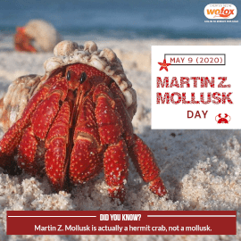 Online Editable Martin Z. Mollusk Day Instagram Post