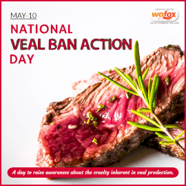 Online Editable National Veal Ban Action Day Instagram Post