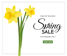 Online Editable Spring Festive Season Sale Facebook Post