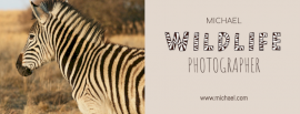 Online Editable Fancy Text Wildlife Photography Photo Collage