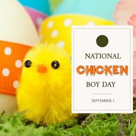 Online Editable National Chicken Boy Day September 1 with Fancy Font Instagram Post