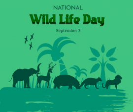 Online Editable National Wild Life Day September 3 Facebook Post