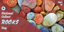 Online Editable National Collect Rocks Day Twitter Post