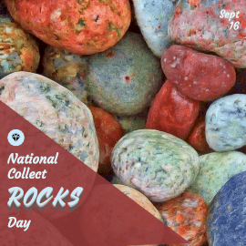 National Collect Rocks Day - Instagram Post