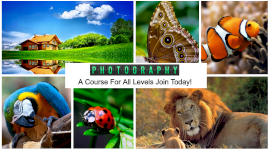Online Editable Photography Courses 6 Photo Collage