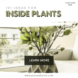 Online Editable Ideas for Indoor Plants Instagram Ad